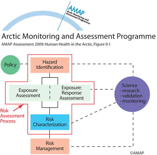 The various elements of the risk assessment process | AMAP