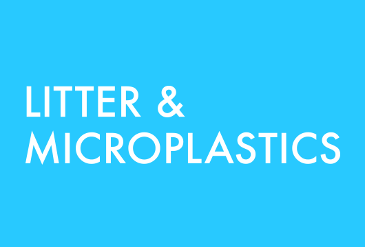 MICROPLASTICS AND LITTER IN THE ENVIRONMENT