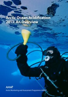 an overview of the ocean acidification Overview mission & vision  ocean acidification  to more closely mimic conditions that marine organisms experience in the ocean, scientists use the ocean.